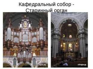 Кафедральный собор - Старинный орган