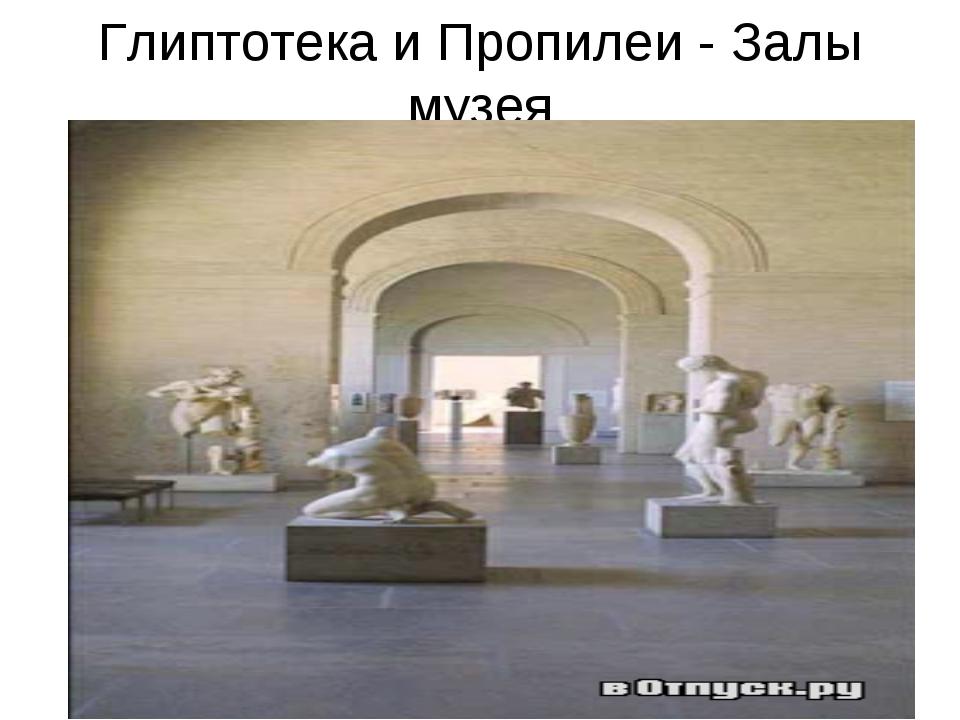 Глиптотека и Пропилеи - Залы музея