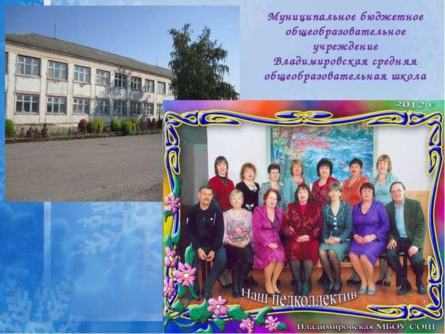 Муниципальное бюджетное общеобразовательное учреждение Владимировская средня...