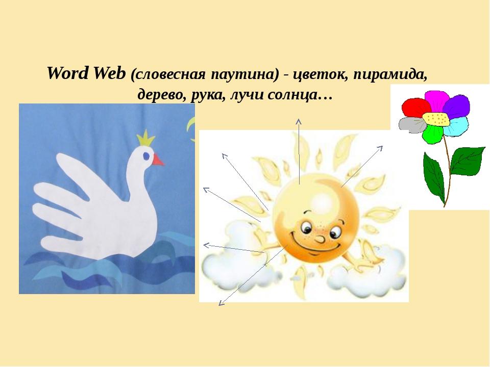 Word Web (словесная паутина) - цветок, пирамида, дерево, рука, лучи солнца…