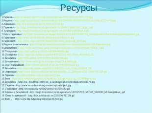 1.Гармонь – http://www.pav-edin23.ru/wp-content/uploads/2013/08/03-08-2013_02