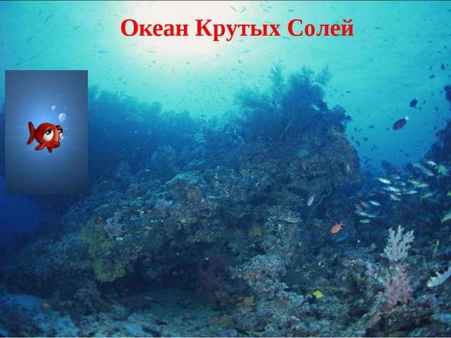 Океан Крутых Солей