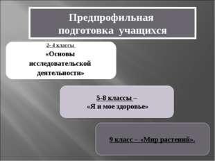 Предпрофильная подготовка учащихся 2- 4 классы «Основы исследовательской деят