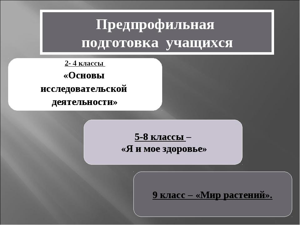 Предпрофильная подготовка учащихся 2- 4 классы «Основы исследовательской деят...