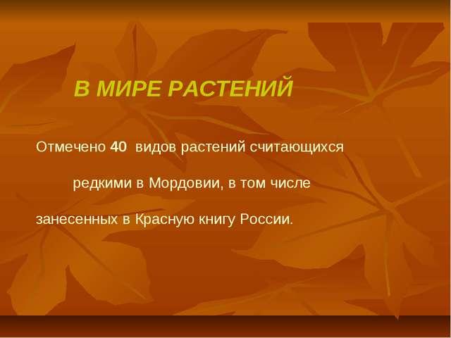 В МИРЕ РАСТЕНИЙ Отмечено 40 видов растений считающихся редкими в Мордовии, в...