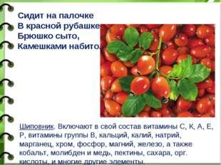 Шиповник. Включают в свой состав витамины С, К, А, Е, Р, витамины группы В, к