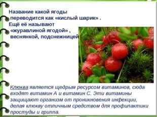 Название какой ягоды переводится как «кислый шарик» . Ещё её называют «журавл