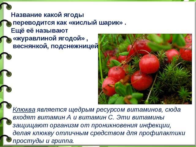 Название какой ягоды переводится как «кислый шарик» . Ещё её называют «журавл...