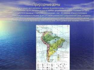 Природные зоны Характерная черта материка – наличие труднопроходимых влажных