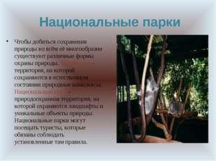 Национальные парки Чтобы добиться сохранения природы во всём её многообразии