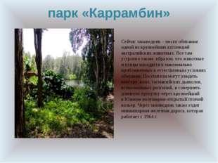 парк «Каррамбин» Сейчас заповедник – место обитания одной изкрупнейших колле