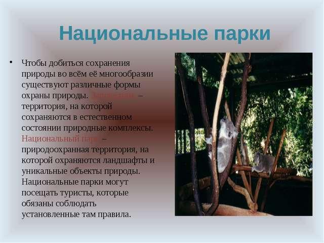 Национальные парки Чтобы добиться сохранения природы во всём её многообразии...