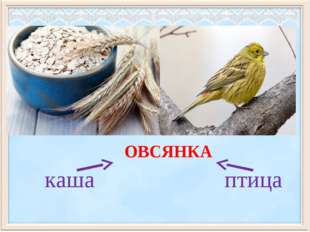 каша птица ОВСЯНКА