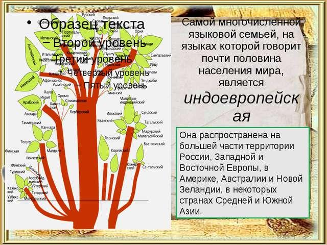 Самой многочисленной языковой семьей, на языках которой говорит почти половин...