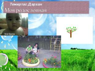 Темиртас Дархан Мой братик