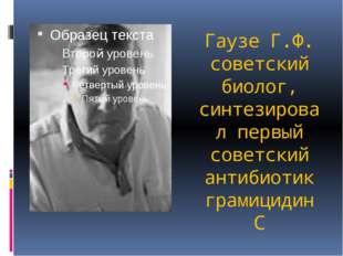 Гаузе Г.Ф. советский биолог, синтезировал первый советский антибиотик грамици
