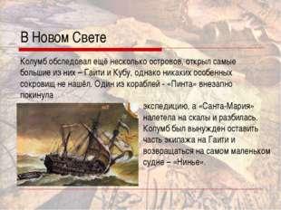 В Новом Свете Колумб обследовал ещё несколько островов, открыл самые большие