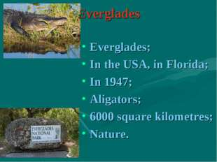 Everglades Everglades; In the USA, in Florida; In 1947; Aligators; 6000 squar