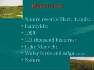 Black Lands Nature reserve Black Lands; Kalmykia; 1990; 121 thousand hectares