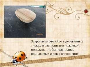 Закрепляем это яйцо в деревянных тисках и распиливаем ножовкой пополам, чтобы