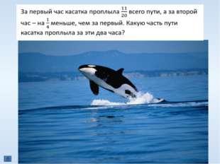 КЕТОЛОГИЯ (др.-греч.κῆτος, откудалат.cētus— «огромное морское животное, м
