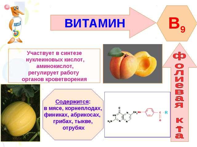 ВИТАМИН B9 Участвует в синтезе нуклеиновых кислот, аминокислот, регулирует ра...