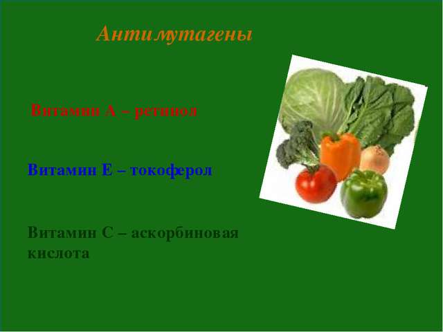Антимутагены Витамин А – ретинол Витамин Е – токоферол Витамин С – аскорбинов...