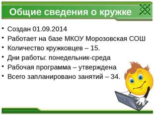 Общие сведения о кружке Создан 01.09.2014 Работает на базе МКОУ Морозовская С