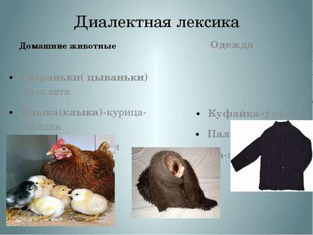 Диалектная лексика Домашние животные Цыраньки( цываньки)-цыплята Клыка(клыка)...