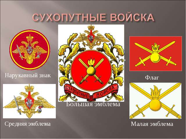 Нарукавный знак Большая эмблема Средняя эмблема Флаг Малая эмблема