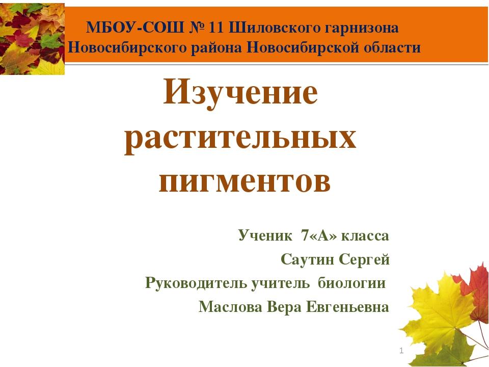 МБОУ-СОШ № 11 Шиловского гарнизона Новосибирского района Новосибирской област...