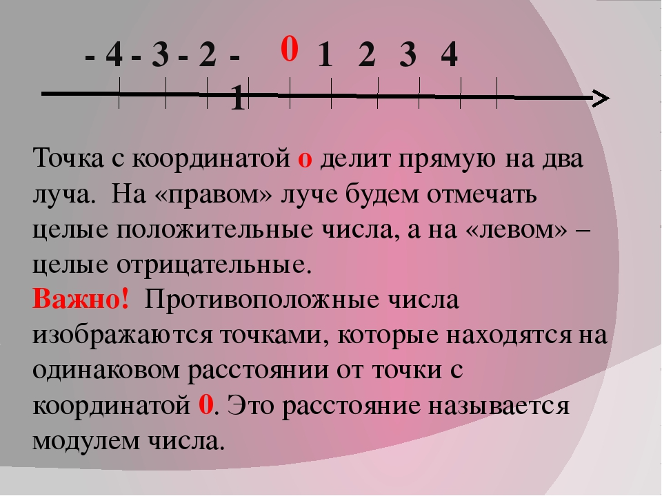 0 1 2 3 4 - 1 - 2 - 3 - 4 Точка с координатой о делит прямую на два луча. На...