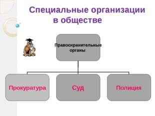 Специальные организации в обществе Правоохранительные органы Прокуратура Суд