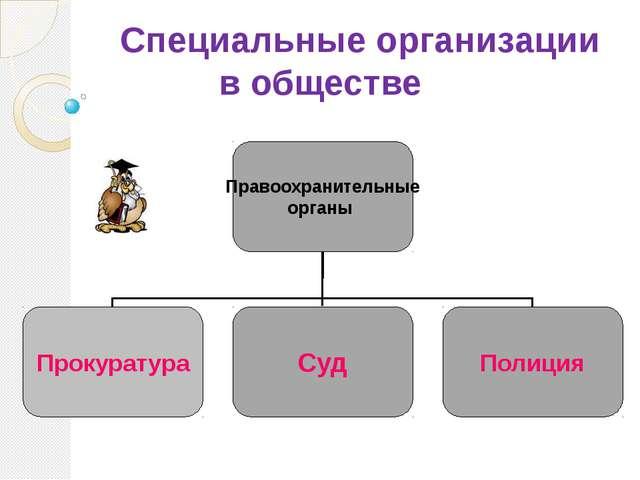 Специальные организации в обществе Правоохранительные органы Прокуратура Суд...