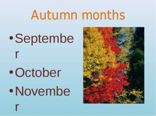 Autumn months September October November