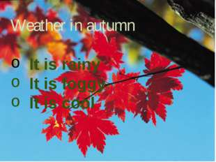 Weather in autumn It is rainy It is foggy It is cool