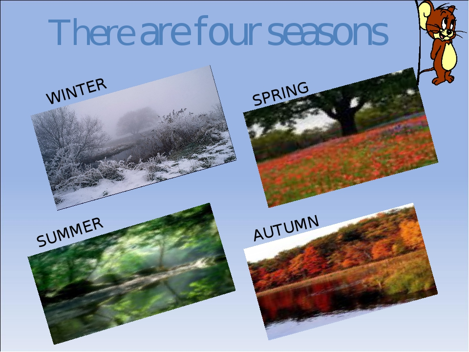 There are four seasons WINTER SPRING SUMMER AUTUMN