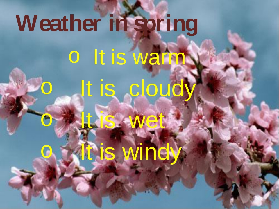 It is warm It is cloudy It is wet It is windy Weather in spring