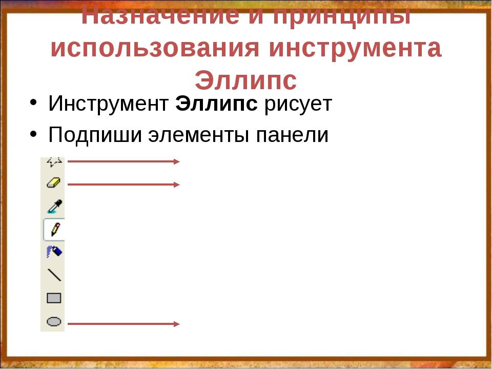 Назначение и принципы использования инструмента Эллипс Инструмент Эллипс рису...