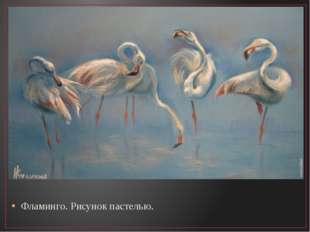 Фламинго. Рисунок пастелью.