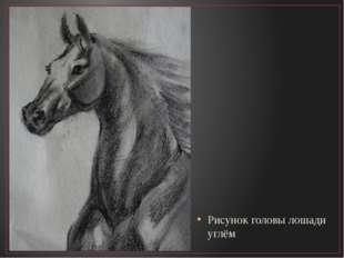 Рисунок головы лошади углём