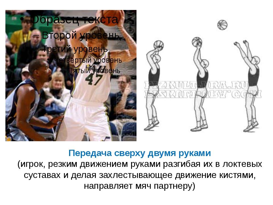 Передача сверху двумя руками (игрок, резким движением руками разгибая их в л...