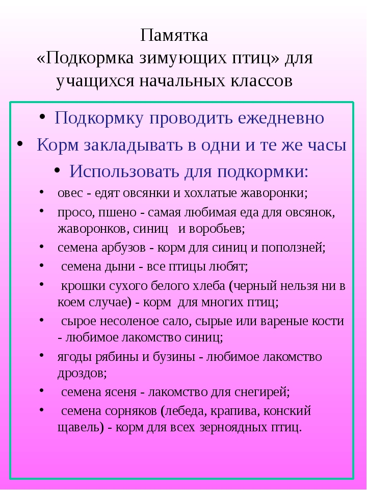Памятка «Подкормка зимующих птиц» для учащихся начальных классов Подкормку пр...