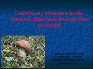 Съедобные и ядовитые грибы. Правила сбора съедобных грибов и их охрана. Учите