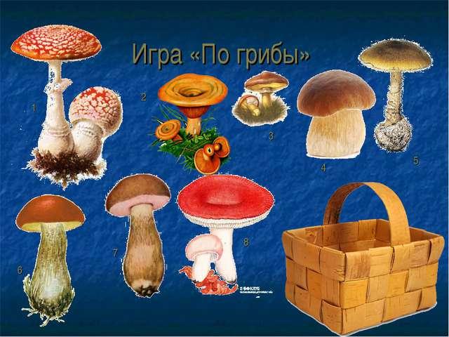 Игра «По грибы» 1 2 3 4 5 6 7 8