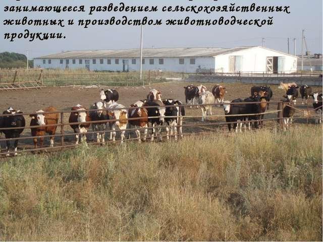 Ферма - сельскохозяйственное предприятие, занимающееся разведением сельскохоз...