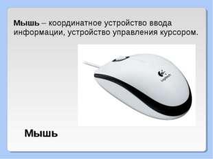Мышь – координатное устройство ввода информации, устройство управления курсор