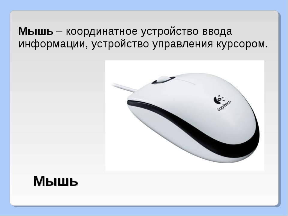 Мышь – координатное устройство ввода информации, устройство управления курсор...