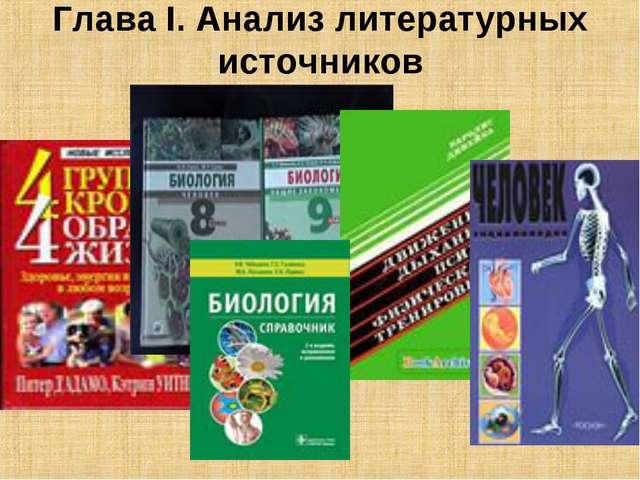 Глава I. Анализ литературных источников