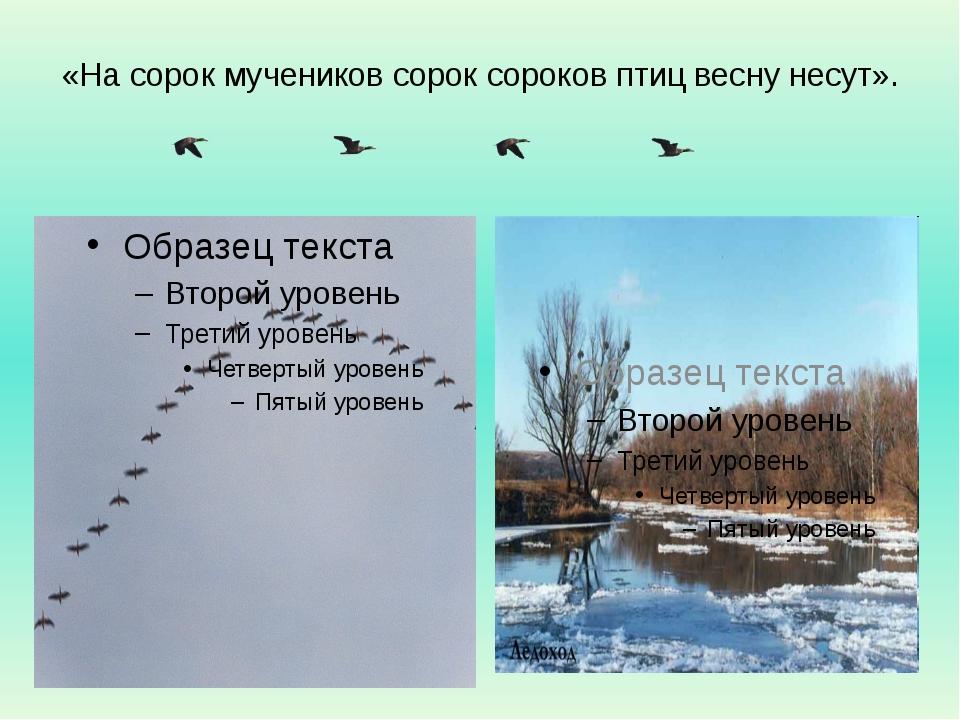 «На сорок мучеников сорок сороков птиц весну несут».